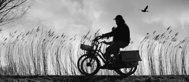 A couple enjoying cycling on an autumn day.